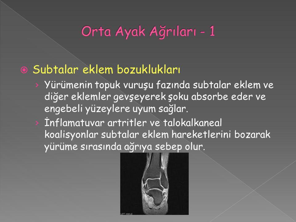  Subtalar eklem bozuklukları › Yürümenin topuk vuruşu fazında subtalar eklem ve diğer eklemler gevşeyerek şoku absorbe eder ve engebeli yüzeylere uyu