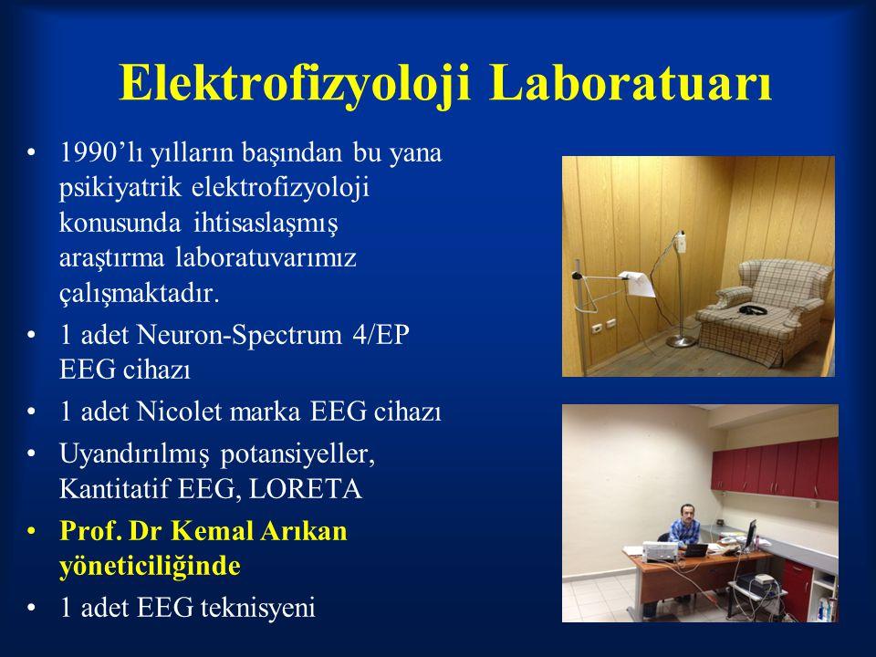 Elektrofizyoloji Laboratuarı 1990'lı yılların başından bu yana psikiyatrik elektrofizyoloji konusunda ihtisaslaşmış araştırma laboratuvarımız çalışmak