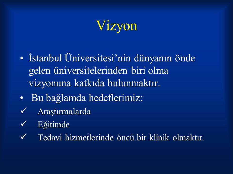 Vizyon İstanbul Üniversitesi'nin dünyanın önde gelen üniversitelerinden biri olma vizyonuna katkıda bulunmaktır. Bu bağlamda hedeflerimiz: Araştırmala
