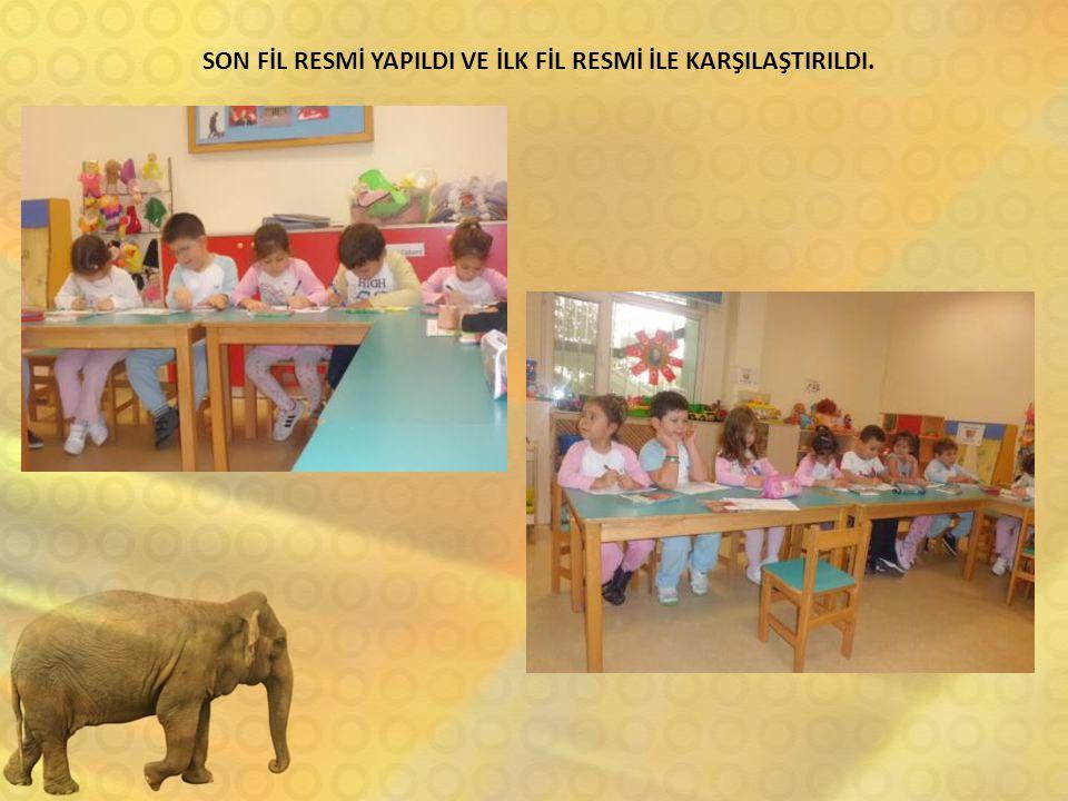 SON FİL RESMİ YAPILDI VE İLK FİL RESMİ İLE KARŞILAŞTIRILDI.