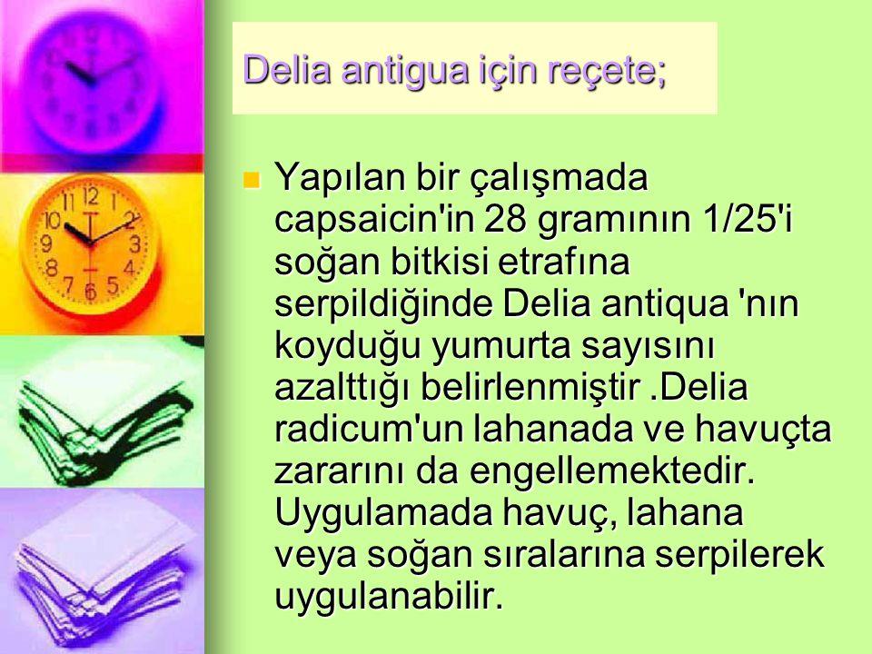 Delia antigua için reçete; Yapılan bir çalışmada capsaicin in 28 gramının 1/25 i soğan bitkisi etrafına serpildiğinde Delia antiqua nın koyduğu yumurta sayısını azalttığı belirlenmiştir.Delia radicum un lahanada ve havuçta zararını da engellemektedir.