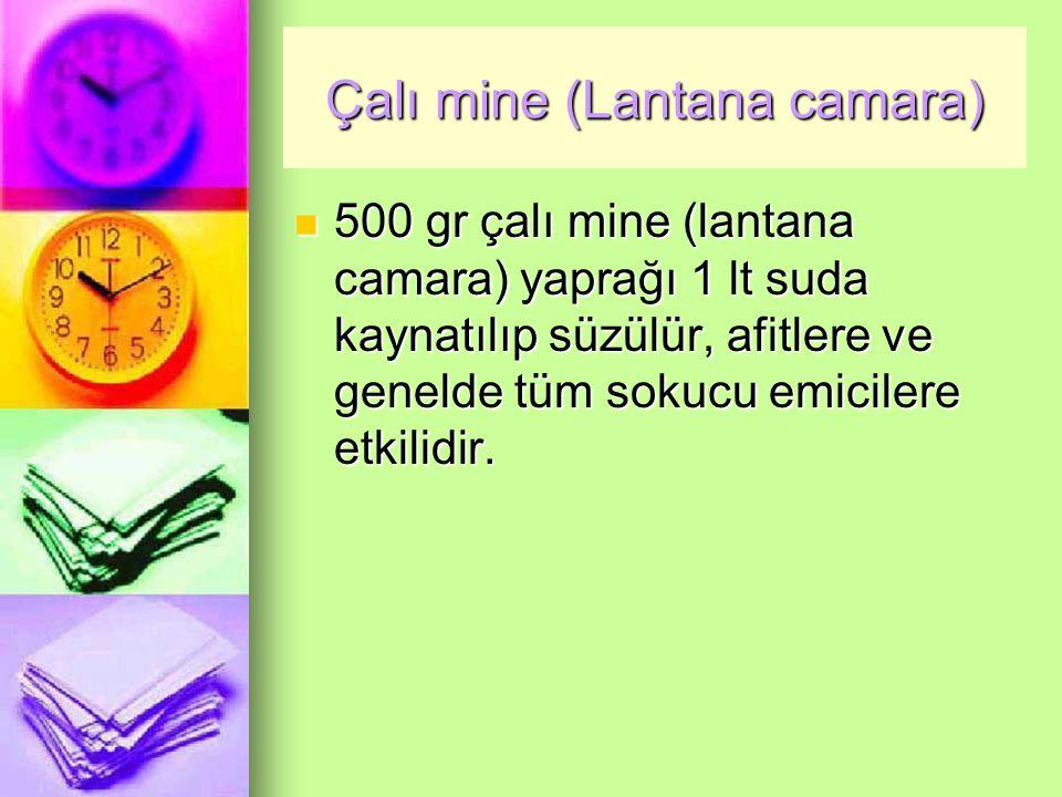 Çalı mine (Lantana camara) 500 gr çalı mine (lantana camara) yaprağı 1 lt suda kaynatılıp süzülür, afitlere ve genelde tüm sokucu emicilere etkilidir.