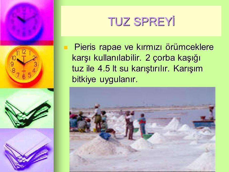 TUZ SPREYİ Pieris rapae ve kırmızı örümceklere karşı kullanılabilir.