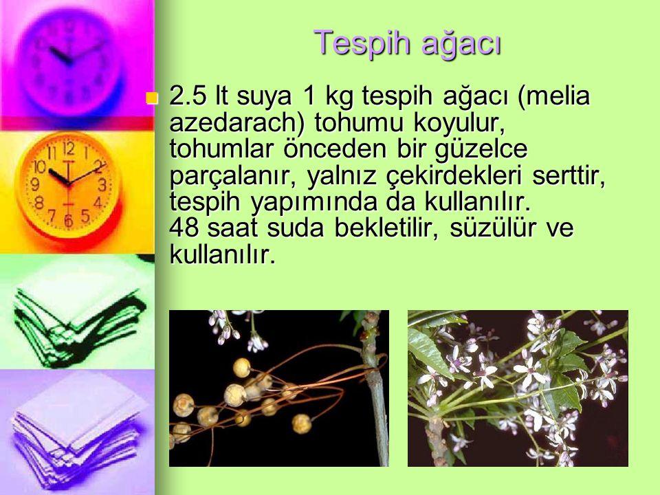 Tespih ağacı 2.5 lt suya 1 kg tespih ağacı (melia azedarach) tohumu koyulur, tohumlar önceden bir güzelce parçalanır, yalnız çekirdekleri serttir, tespih yapımında da kullanılır.