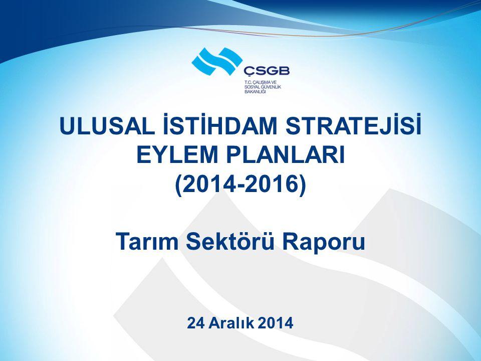 ULUSAL İSTİHDAM STRATEJİSİ EYLEM PLANLARI (2014-2016) Tarım Sektörü Raporu 24 Aralık 2014
