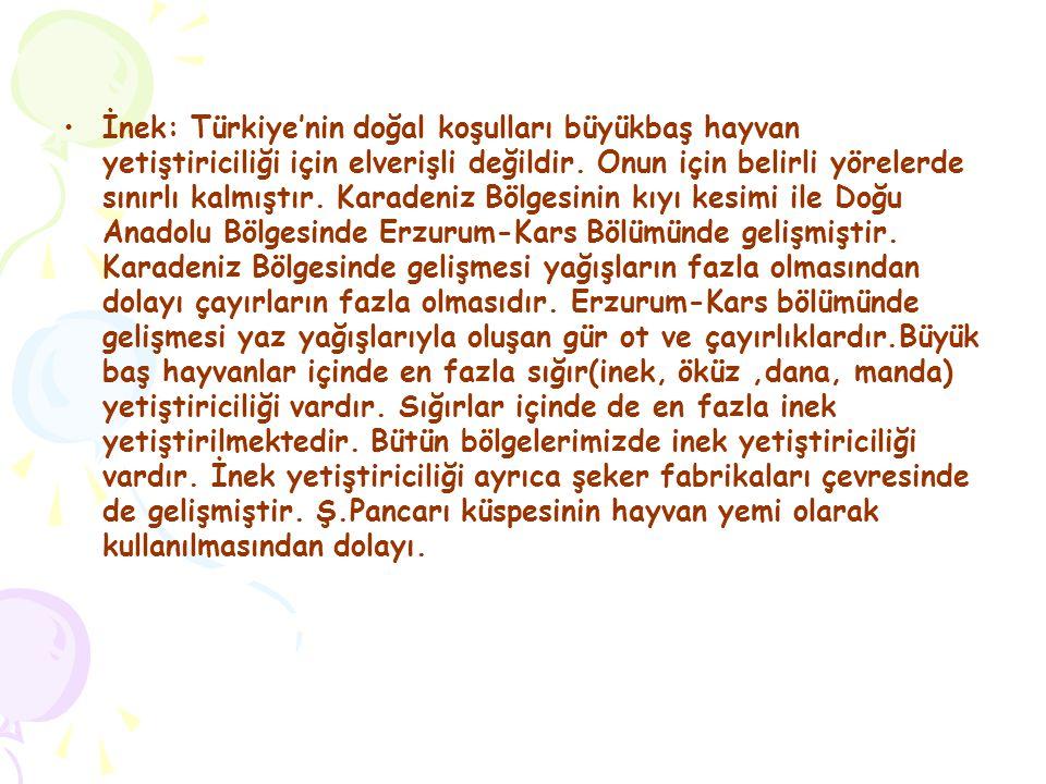 İnek: Türkiye'nin doğal koşulları büyükbaş hayvan yetiştiriciliği için elverişli değildir. Onun için belirli yörelerde sınırlı kalmıştır. Karadeniz Bö