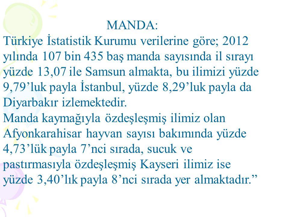 MANDA: Türkiye İstatistik Kurumu verilerine göre; 2012 yılında 107 bin 435 baş manda sayısında il sırayı yüzde 13,07 ile Samsun almakta, bu ilimizi yüzde 9,79'luk payla İstanbul, yüzde 8,29'luk payla da Diyarbakır izlemektedir.