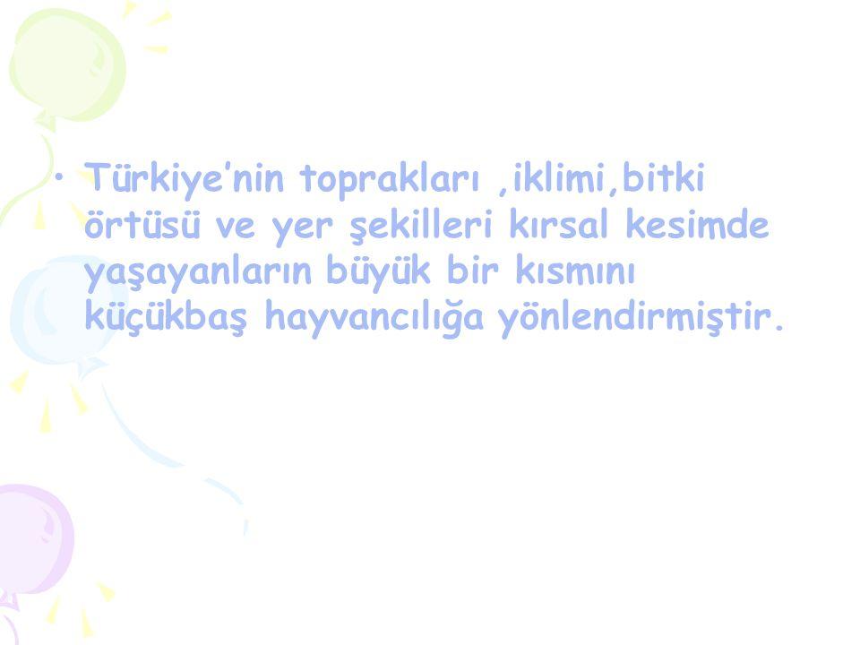 Türkiye'nin toprakları,iklimi,bitki örtüsü ve yer şekilleri kırsal kesimde yaşayanların büyük bir kısmını küçükbaş hayvancılığa yönlendirmiştir.