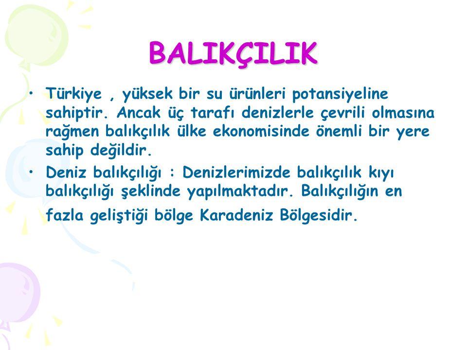 BALIKÇILIK Türkiye, yüksek bir su ürünleri potansiyeline sahiptir. Ancak üç tarafı denizlerle çevrili olmasına rağmen balıkçılık ülke ekonomisinde öne