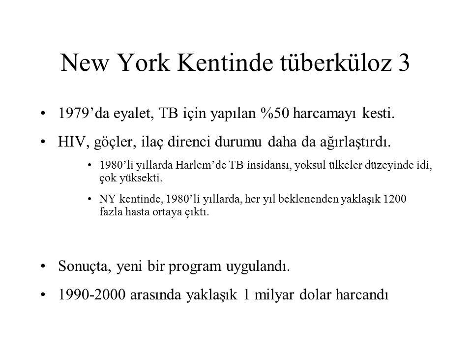 New York Kentinde tüberküloz 3 1979'da eyalet, TB için yapılan %50 harcamayı kesti. HIV, göçler, ilaç direnci durumu daha da ağırlaştırdı. 1980'li yıl