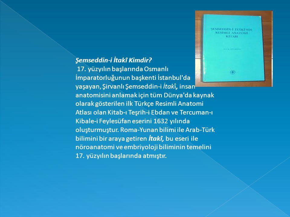 Şemseddin-i İtakî Kimdir? 17. yüzyılın başlarında Osmanlı İmparatorluğunun başkenti İstanbul'da yaşayan, Şirvanlı Şemseddin-i İtakî, insan anatomisini