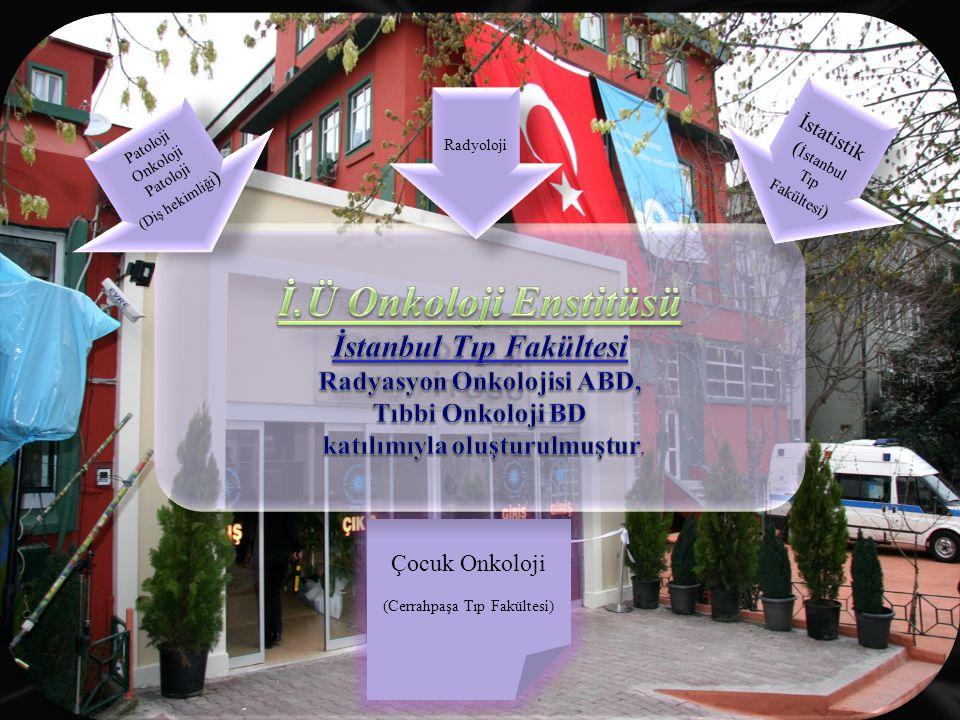 Çocuk Onkoloji (Cerrahpaşa Tıp Fakültesi) İstatistik ( İstanbul Tıp Fakültesi ) Patoloji Onkoloji Patoloji (Diş hekimliği ) Patoloji Onkoloji Patoloji (Diş hekimliği ) Radyoloji