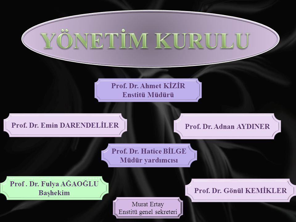 Prof.Dr. Ahmet KİZİR Enstitü Müdürü Prof. Dr. Emin DARENDELİLER Prof.