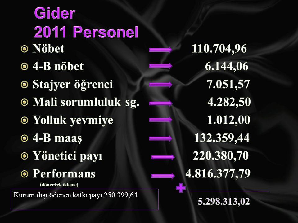 Kurum dışı ödenen katkı payı 250.399,64