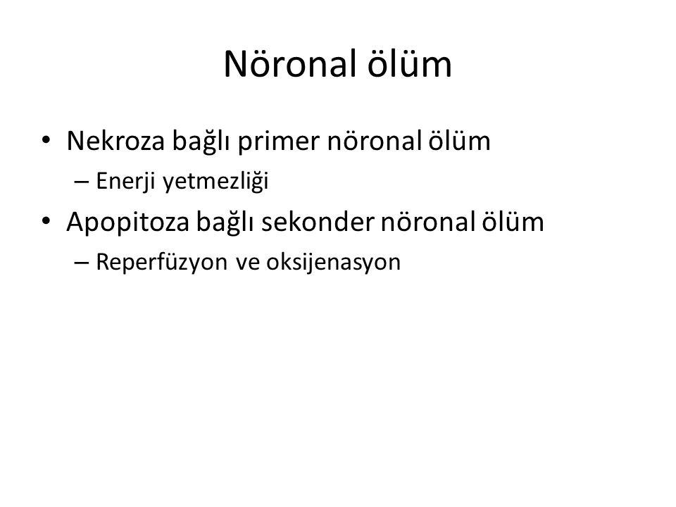 Nöronal ölüm Nekroza bağlı primer nöronal ölüm – Enerji yetmezliği Apopitoza bağlı sekonder nöronal ölüm – Reperfüzyon ve oksijenasyon