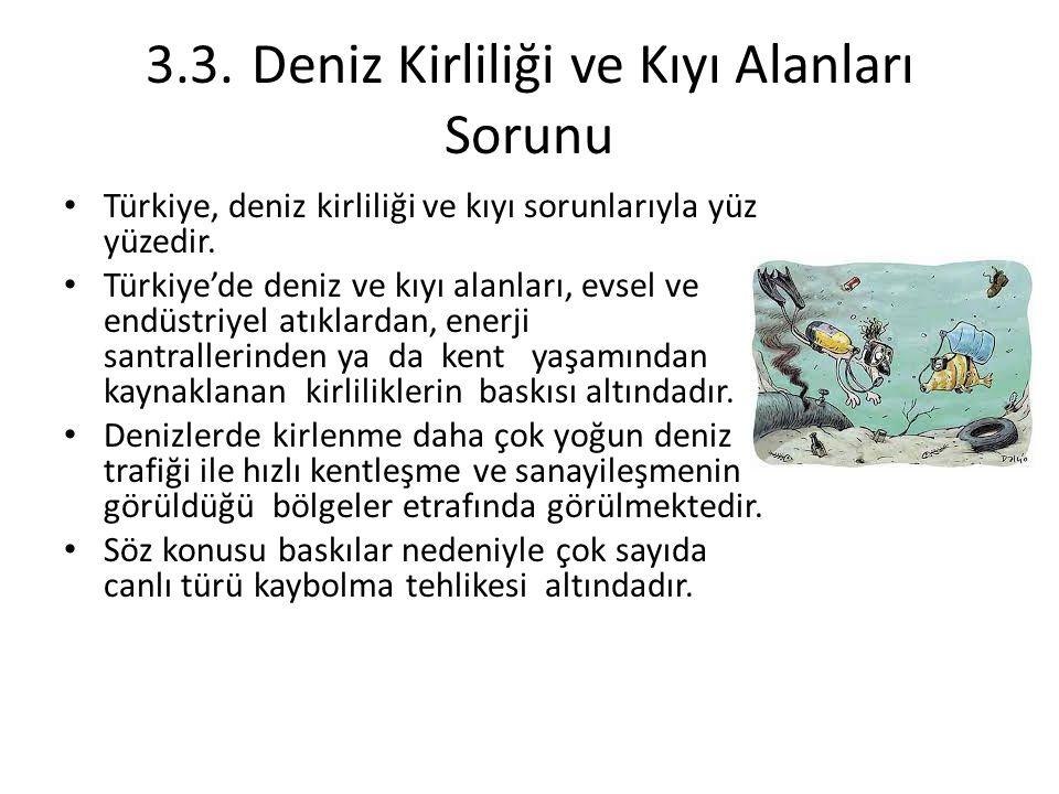 3.3.Deniz Kirliliği ve Kıyı Alanları Sorunu Türkiye, deniz kirliliği ve kıyı sorunlarıyla yüz yüzedir. Türkiye'de deniz ve kıyı alanları, evsel ve end