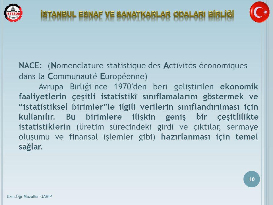 Uzm.Öğr.Muzaffer GARİP 10 NACE: ( N omenclature statistique des A ctivités économiques dans la C ommunauté E uropéenne) Avrupa Birliği´nce 1970 ' den