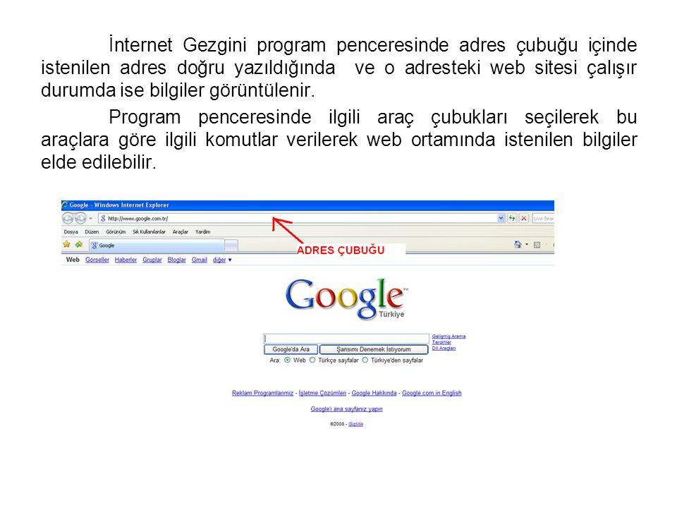 İnternet Gezgini program penceresinde adres çubuğu içinde istenilen adres doğru yazıldığında ve o adresteki web sitesi çalışır durumda ise bilgiler gö