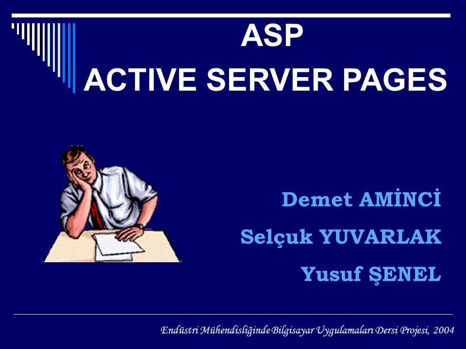 HAZİRAN ASP ACTIVE SERVER PAGES Demet AMİNCİ Selçuk YUVARLAK Yusuf ŞENEL Endüstri Mühendisliğinde Bilgisayar Uygulamaları Dersi Projesi, 2004