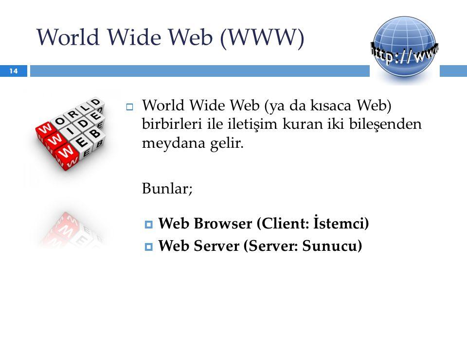 World Wide Web (WWW)  World Wide Web (ya da kısaca Web) birbirleri ile iletişim kuran iki bileşenden meydana gelir. Bunlar;  Web Browser (Client: İs