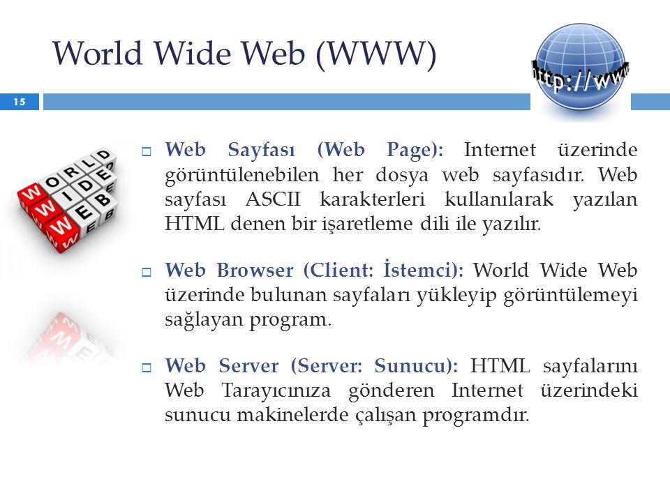 World Wide Web (WWW)  Web Sayfası (Web Page): Internet üzerinde görüntülenebilen her dosya web sayfasıdır. Web sayfası ASCII karakterleri kullanılara