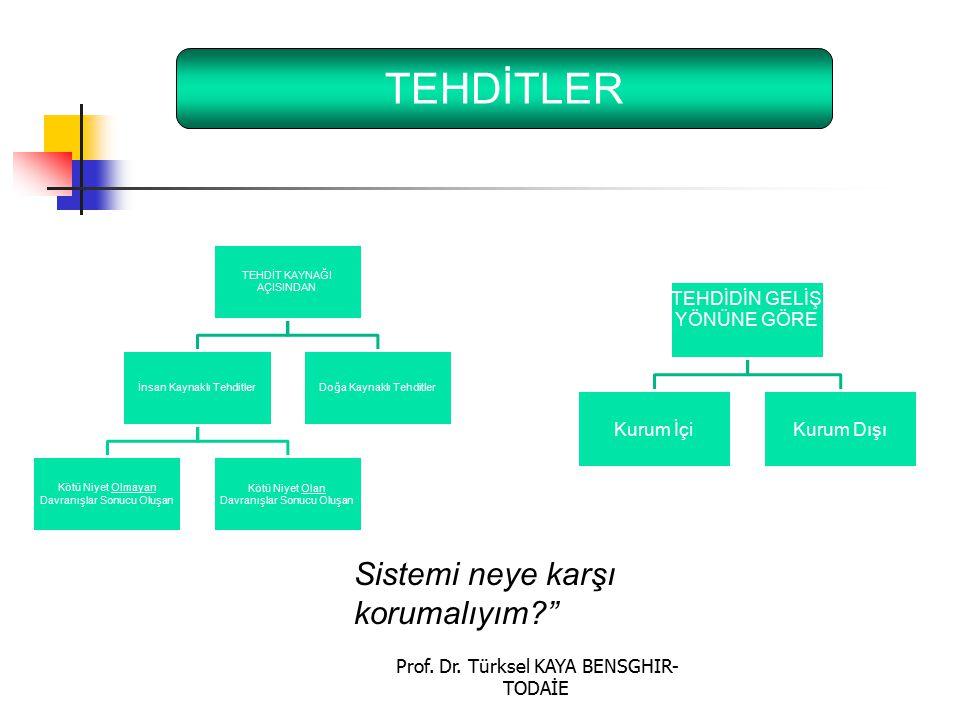 """Prof. Dr. Türksel KAYA BENSGHIR- TODAİE TEHDİTLER Sistemi neye karşı korumalıyım?"""""""