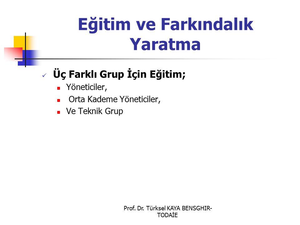 Prof. Dr. Türksel KAYA BENSGHIR- TODAİE Eğitim ve Farkındalık Yaratma Üç Farklı Grup İçin Eğitim; Yöneticiler, Orta Kademe Yöneticiler, Ve Teknik Grup