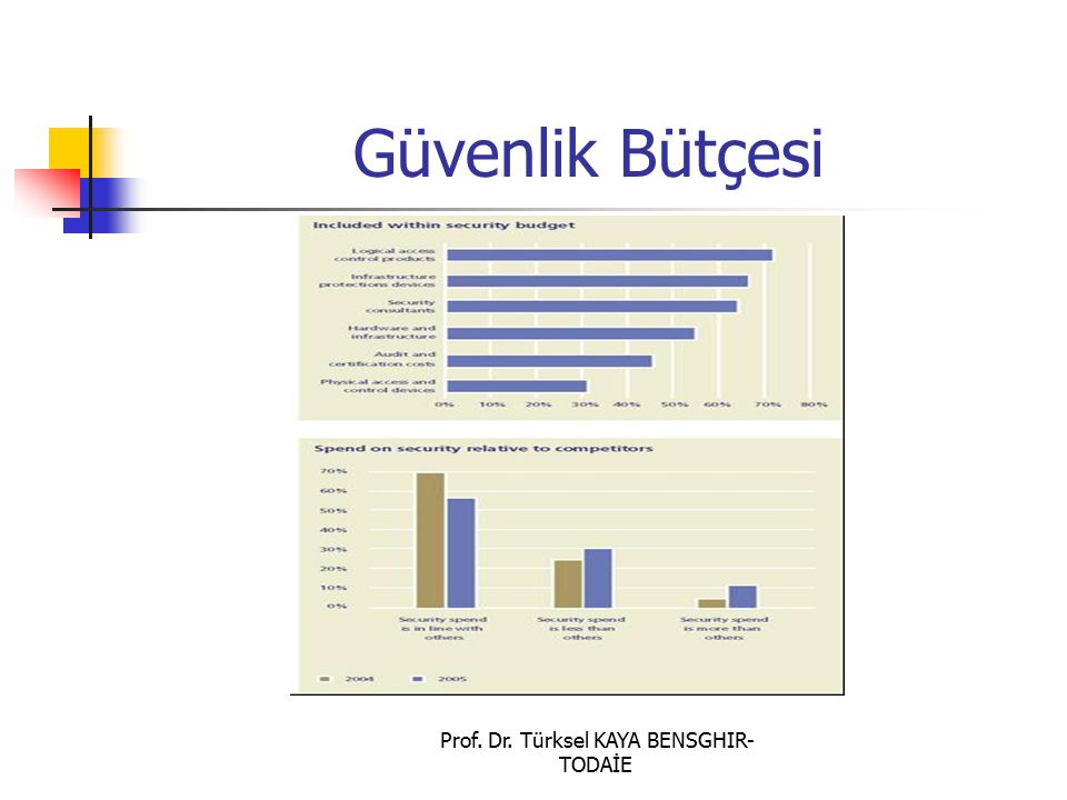 Prof. Dr. Türksel KAYA BENSGHIR- TODAİE Güvenlik Bütçesi
