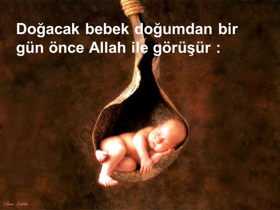28 Doğacak bebek doğumdan bir gün önce Allah ile görüşür :