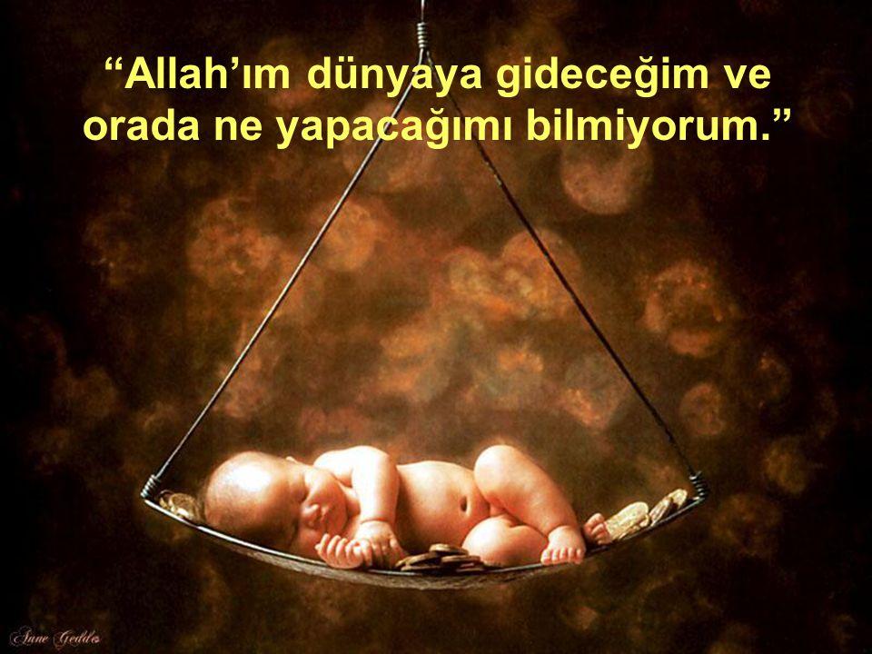 """29 """"Allah'ım dünyaya gideceğim ve orada ne yapacağımı bilmiyorum."""""""