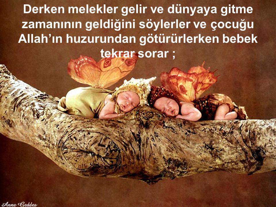 37 Derken melekler gelir ve dünyaya gitme zamanının geldiğini söylerler ve çocuğu Allah'ın huzurundan götürürlerken bebek tekrar sorar ;