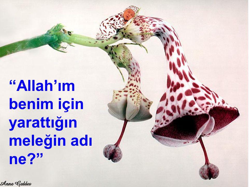 """38 """"Allah'ım benim için yarattığın meleğin adı ne?"""""""