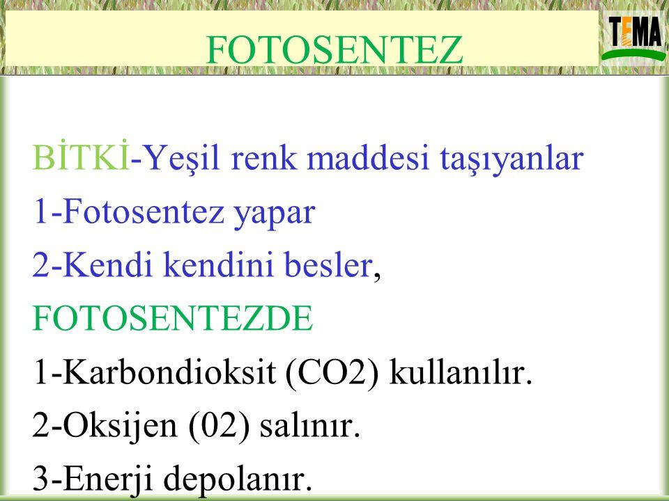 FOTOSENTEZ BİTKİ-Yeşil renk maddesi taşıyanlar 1-Fotosentez yapar 2-Kendi kendini besler, FOTOSENTEZDE 1-Karbondioksit (CO2) kullanılır. 2-Oksijen (02