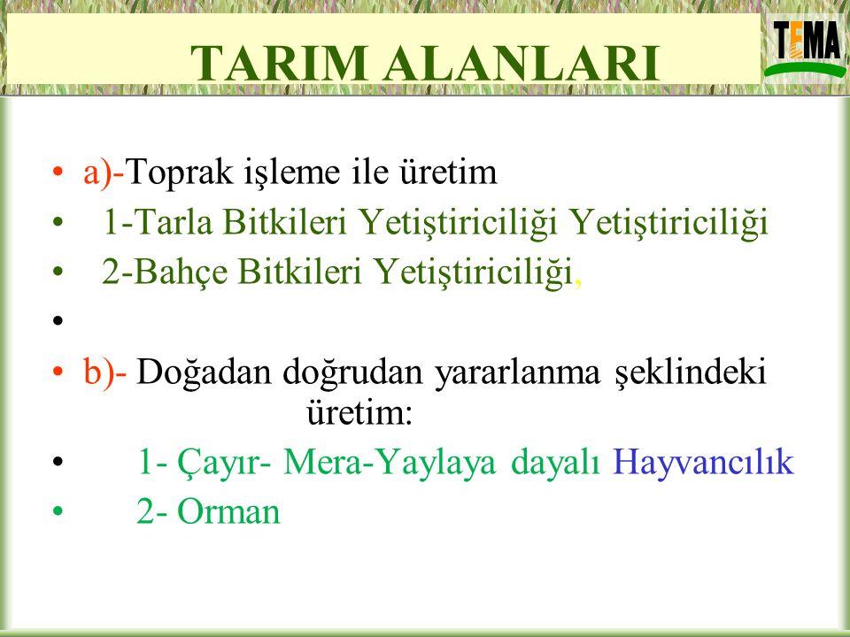 TARIM ALANLARI a)-Toprak işleme ile üretim 1-Tarla Bitkileri Yetiştiriciliği Yetiştiriciliği 2-Bahçe Bitkileri Yetiştiriciliği, b)- Doğadan doğrudan y