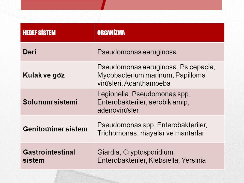 HEDEF SİSTEMORGANİZMA DeriPseudomonas aeruginosa Kulak ve go ̈ z Pseudomonas aeruginosa, Ps cepacia, Mycobacterium marinum, Papilloma viru ̈ sleri, Ac