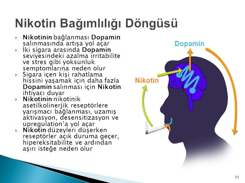  Nikotinin bağlanması Dopamin salınmasında artışa yol açar  İki sigara arasında Dopamin seviyesindeki azalma irritabilite ve stres gibi yoksunluk se
