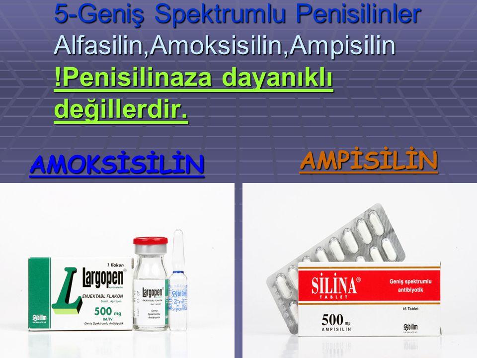 5-Geniş Spektrumlu Penisilinler Alfasilin,Amoksisilin,Ampisilin !Penisilinaza dayanıklı değillerdir. AMOKSİSİLİN AMPİSİLİN
