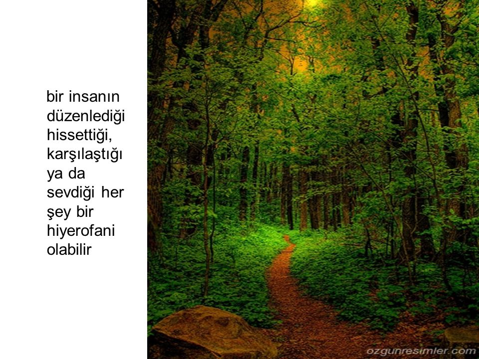 Bir ağaç yada bir bitki, bir bitki ya da bir ağaç olarak kutsallık kazanmaz: aşkın ve gerçekliğin bir parçası olduğu için, bu aşkın gerçekliği temsil ettiği için kutsallık kazanır.