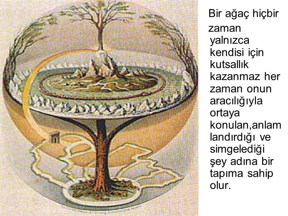 Bir ağaç hiçbir zaman yalnızca kendisi için kutsallık kazanmaz her zaman onun aracılığıyla ortaya konulan,anlam landırdığı ve simgelediği şey adına bi