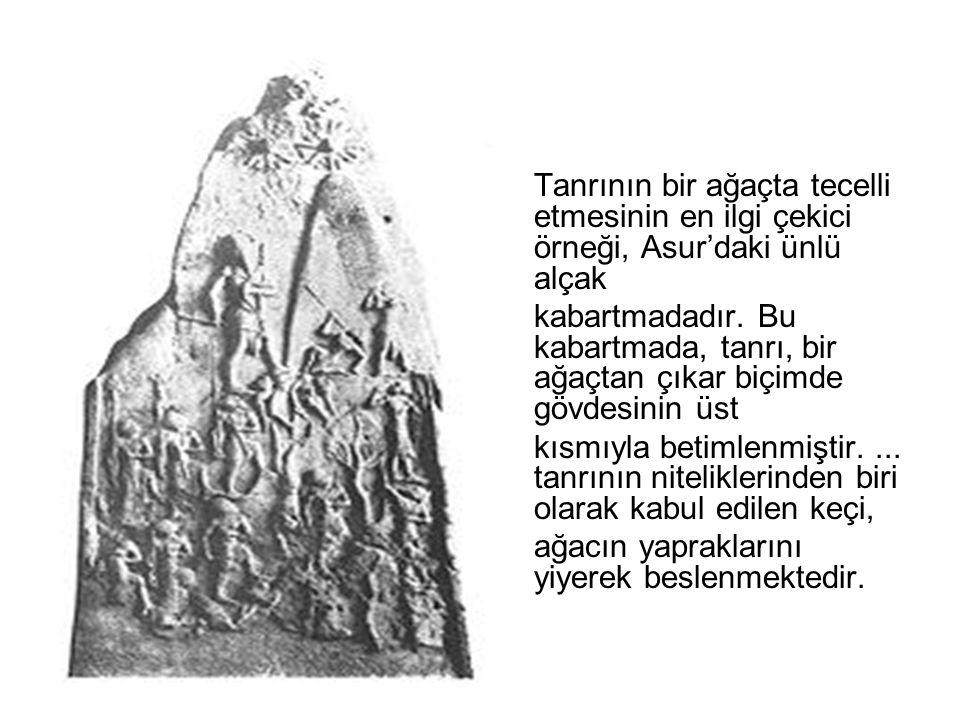 Tanrının bir ağaçta tecelli etmesinin en ilgi çekici örneği, Asur'daki ünlü alçak kabartmadadır. Bu kabartmada, tanrı, bir ağaçtan çıkar biçimde gövde
