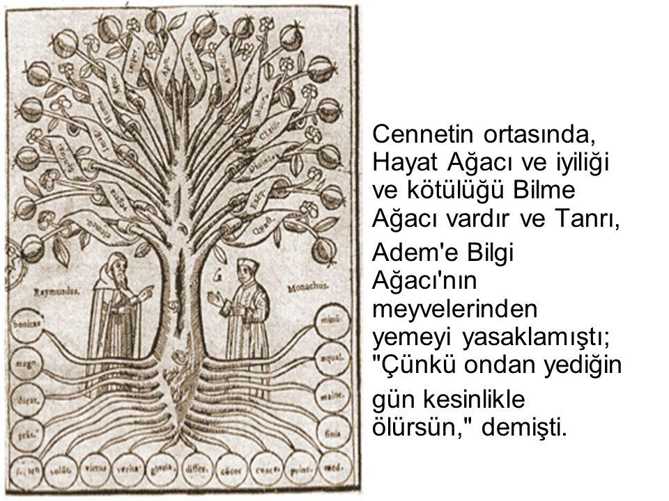 Cennetin ortasında, Hayat Ağacı ve iyiliği ve kötülüğü Bilme Ağacı vardır ve Tanrı, Adem'e Bilgi Ağacı'nın meyvelerinden yemeyi yasaklamıştı;