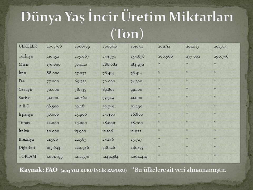 Kaynak: FAO (2013 YILI KURU İNCİR RAPORU) *Bu ülkelere ait veri alınamamıştır.