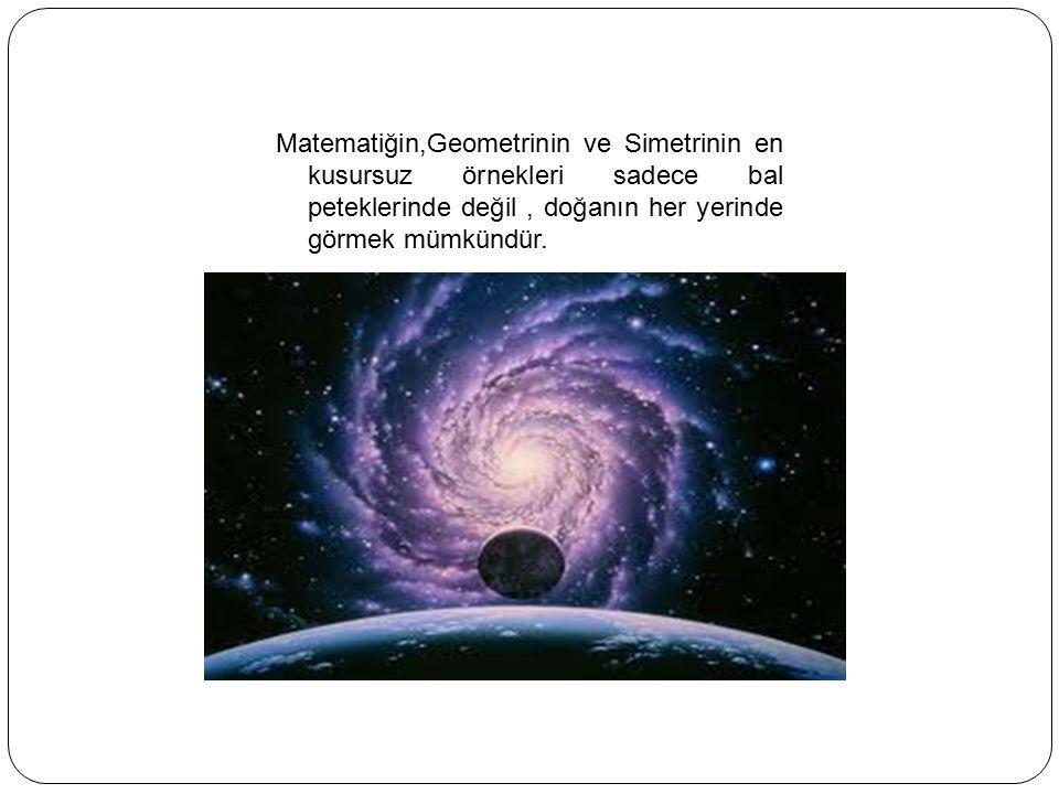 Matematiğin,Geometrinin ve Simetrinin en kusursuz örnekleri sadece bal peteklerinde değil, doğanın her yerinde görmek mümkündür.