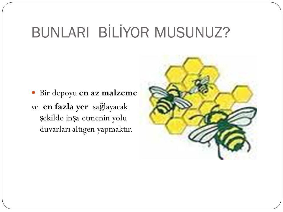 BUNLARI BİLİYOR MUSUNUZ.