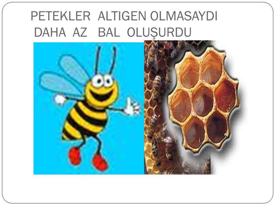 PETEKLER ALTIGEN OLMASAYDI DAHA AZ BAL OLUŞURDU