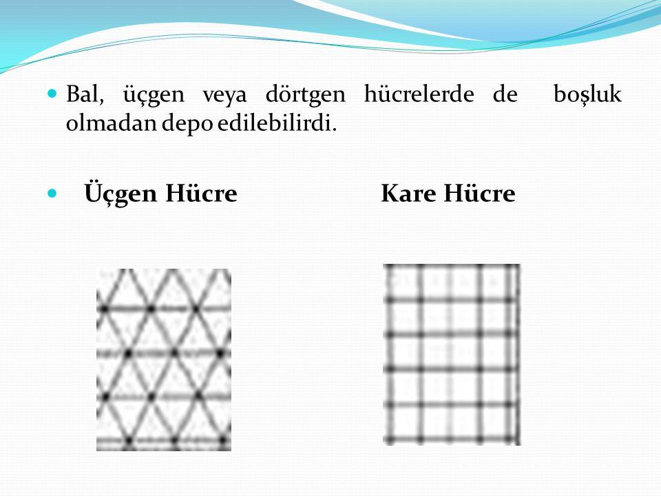 Bal, üçgen veya dörtgen hücrelerde de boşluk olmadan depo edilebilirdi. Üçgen Hücre Kare Hücre