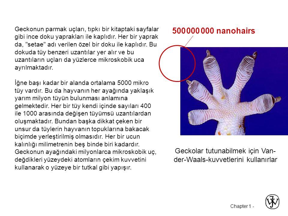 Chapter 1 - 500 000 000 nanohairs Geckolar tutunabilmek için Van- der-Waals-kuvvetlerini kullanırlar Geckonun parmak uçları, tıpkı bir kitaptaki sayfa