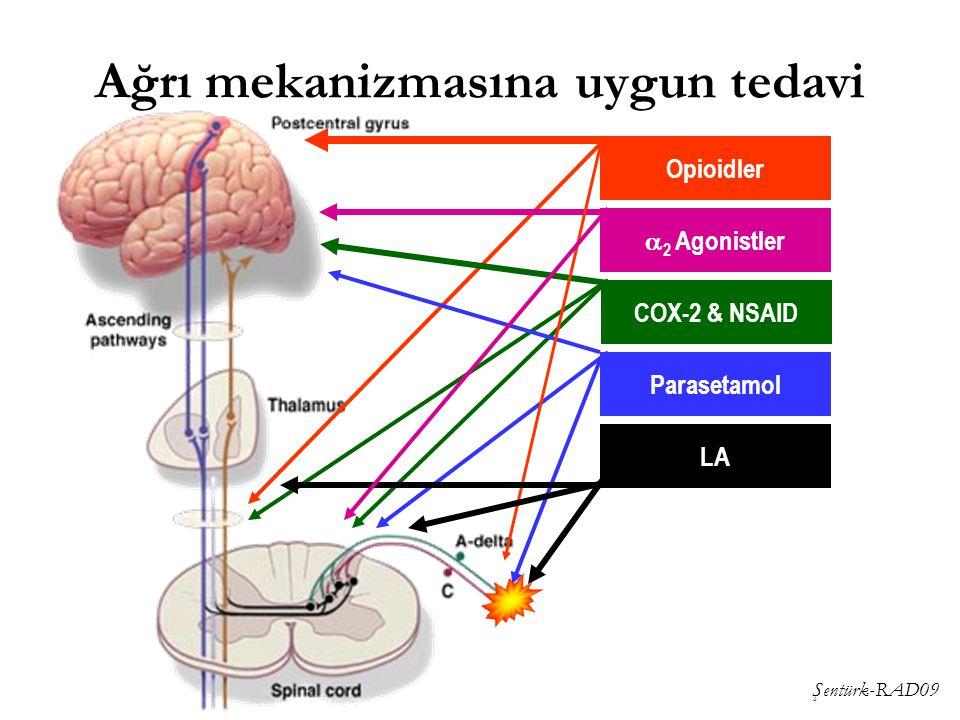 Şentürk-RAD09 Ağrı mekanizmasına uygun tedavi Opioidler  2 Agonistler COX-2 & NSAID Parasetamol LA