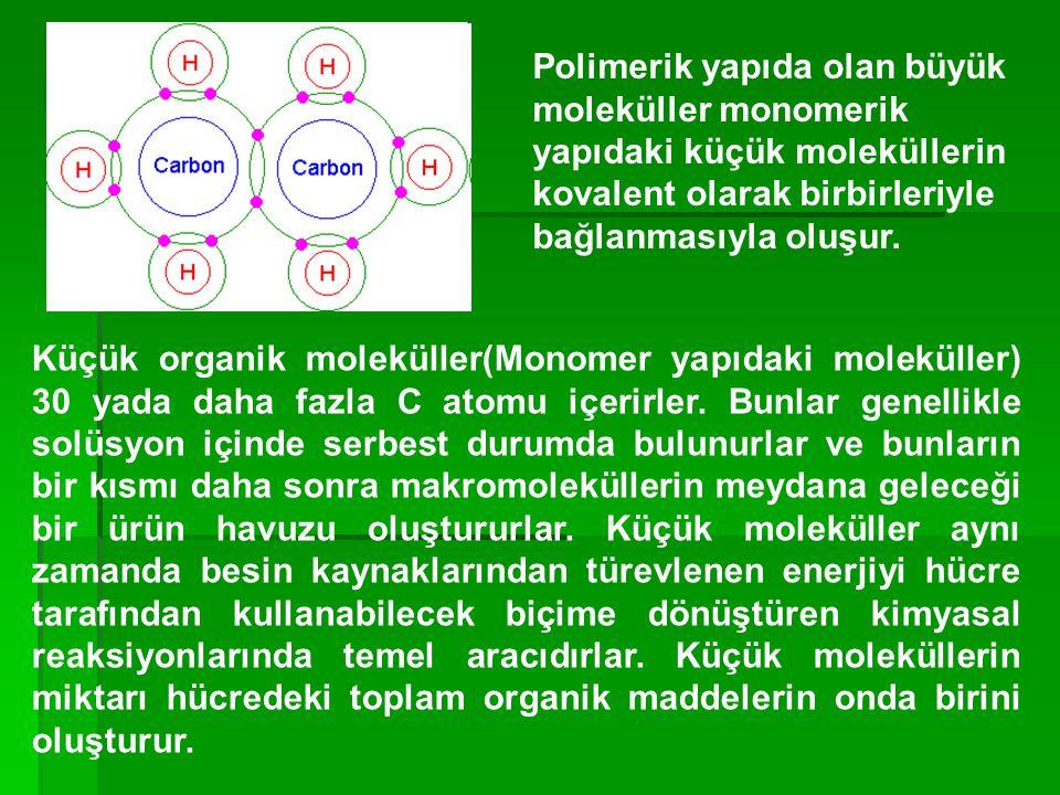 Polimerik yapıda olan büyük moleküller monomerik yapıdaki küçük moleküllerin kovalent olarak birbirleriyle bağlanmasıyla oluşur. Küçük organik molekül