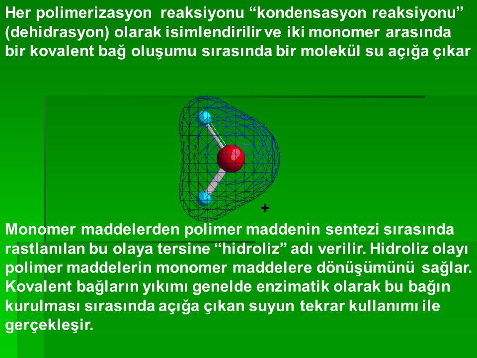 """Her polimerizasyon reaksiyonu """"kondensasyon reaksiyonu"""" (dehidrasyon) olarak isimlendirilir ve iki monomer arasında bir kovalent bağ oluşumu sırasında"""